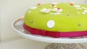 Verjaardagstaart met chocoladeganache en groene fondant